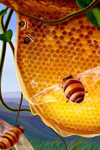 Honey Bee - by Ioswl