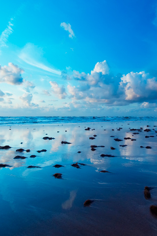 Sea Stone - by Ioswl