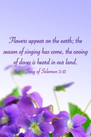 Season of Singing - by Ioswl