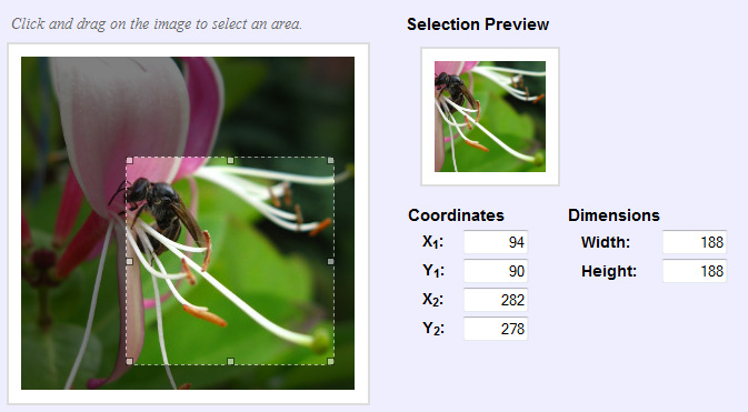 imgAreaSelect A jQuery Image Croping Tool