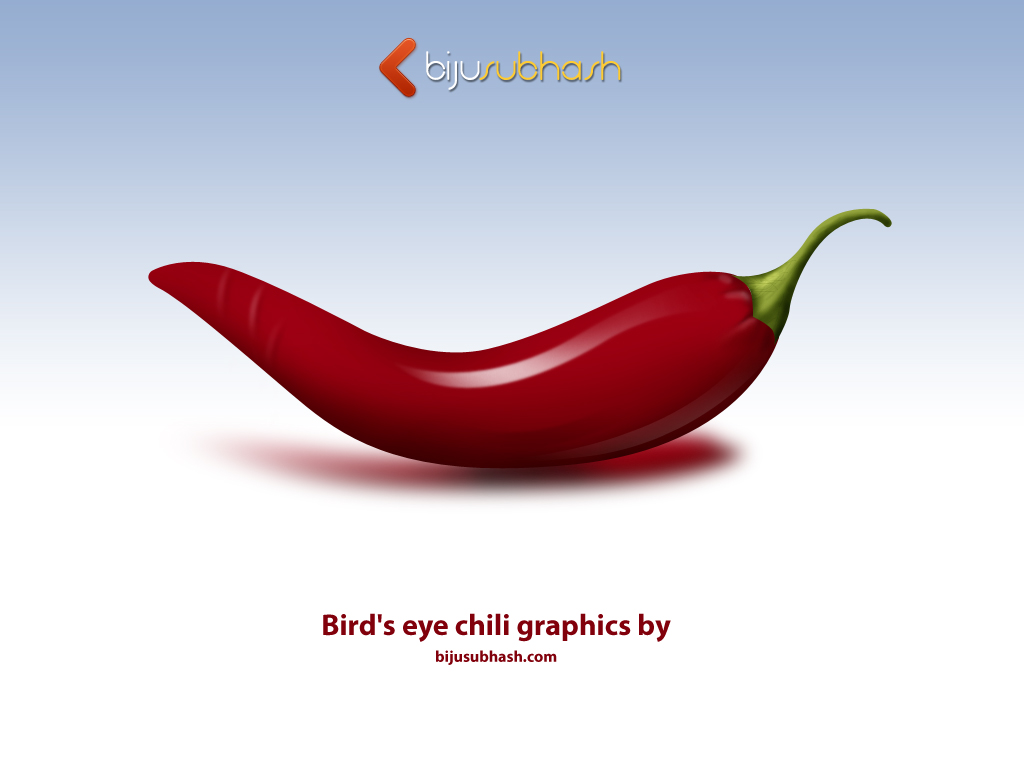 Bird's eye chili Graphics