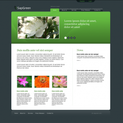 Sap Green Website Layout