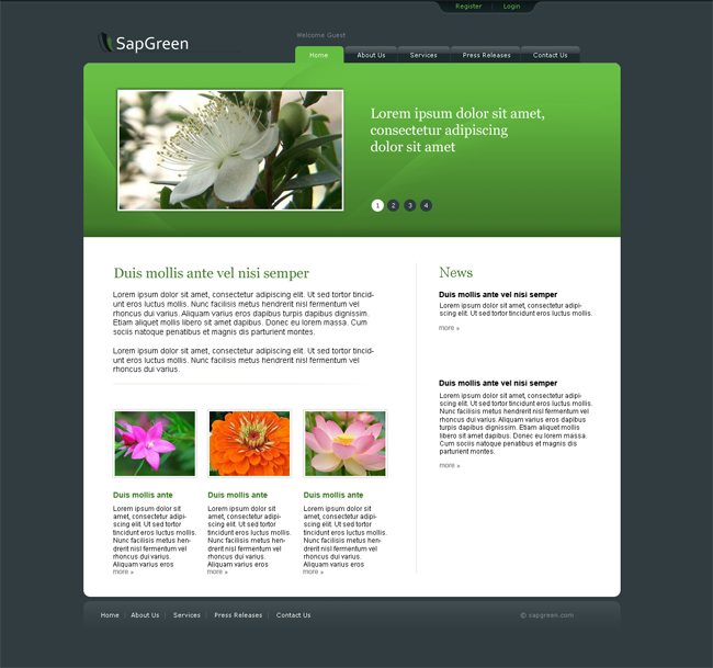 sapgreen_website_layout